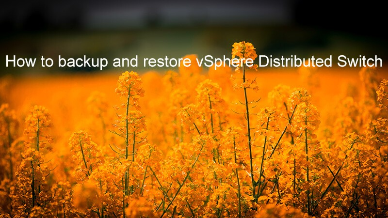 How to backup and restore vSphere Distributed Switch - logo